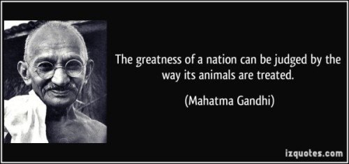 quote-the-greatness-of-a-nation-can-be-judged-by-the-way-its-animals-are-treated-mahatma-gandhi-68116-600x282.jpg